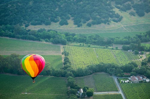 Private hot-air balloon tour of Barolo area